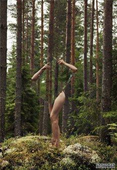 人与自然的反思
